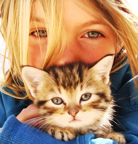 Sweet Girl with Kitty
