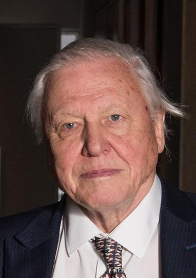 Photo of David Attenborough