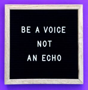 Explainer video: image of a board with 'Be a voice not an echo' written on it.